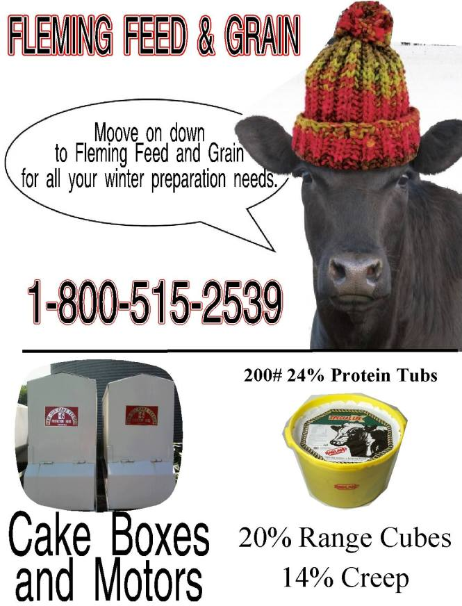 Cattle tub